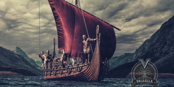 Viking Curiosities